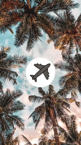 Story template by @ilse.zwart palmtree Travel airplane passport traveblogger blogger music plane