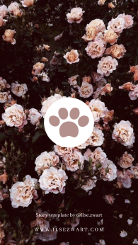 Story template by @ilse.zwart Roses Laptop Instagram Highlight Icons Pet Animal Dogs